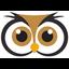 Owl - Dark Background