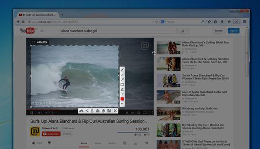 You can take a screenshot of video/flash/java