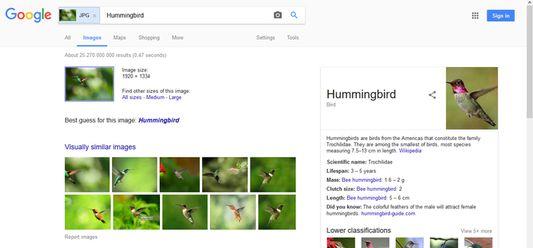 On Google