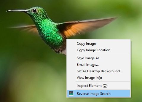 Right click on an image to reverse search it