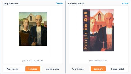 When an image match has been heavily altered, use the 'Compare' feature to quickly switch back and forth between the two images and highlight any differences between them.