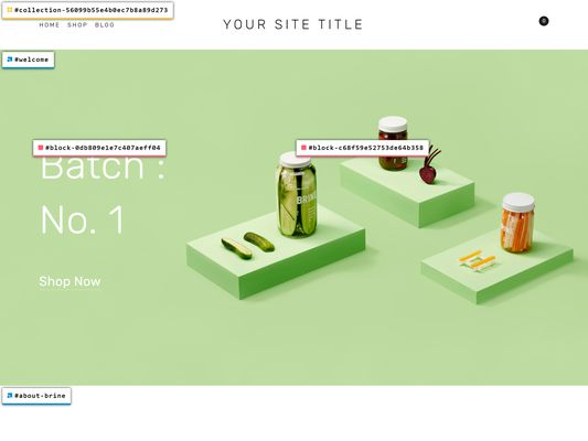 Squarespace v7.0 web page, viewed while logged out using the Squarespace ID Finder.