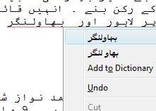 Urdu SpellChecker ScreenShot
