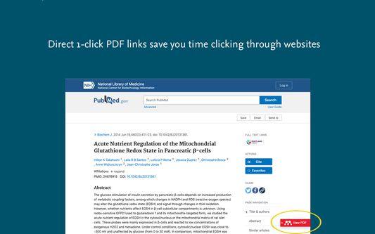 One-click PDF links