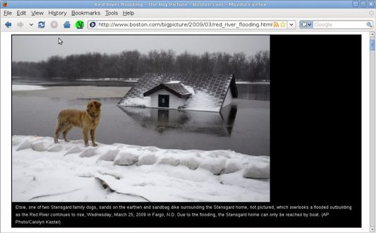 PageZipper resizes any images which are too large to fit in your browser without scrolling