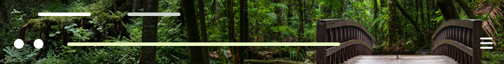 Forest Threshold